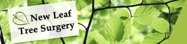 New Leaf Tree Surgery